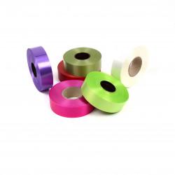 Panglica plastic 3 cm