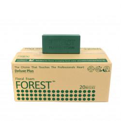 Burete umed Forest