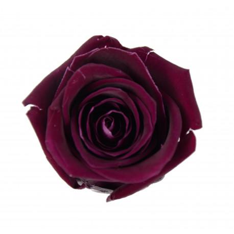 Set 6 trandafiri criogenati 5-6 cm