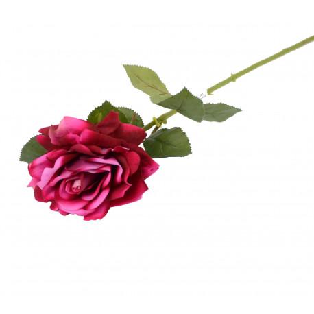 Fir de trandafir