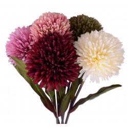 Fir de crizantema