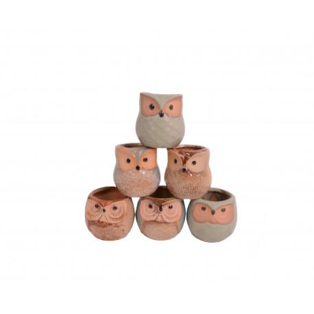 Set 6 ghivece ceramice model bufnita