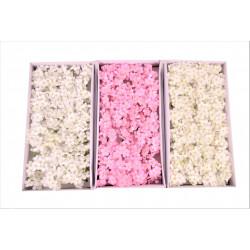 Set 40 hortensii de sapun D 5.5