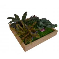Tablou cu plante artificiale 50 x 50